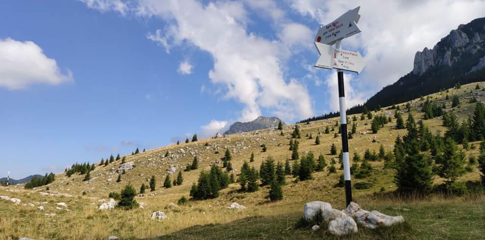 Hiking Bucegi Mountains