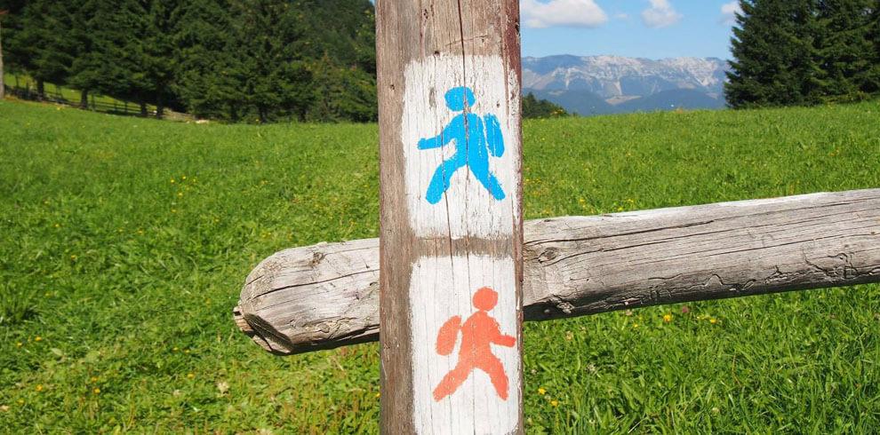 Hiking Bran Area
