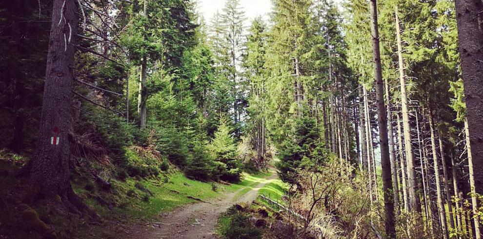 bucegi-hiking-2