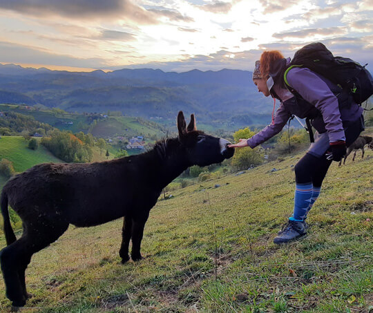 Hiking Trips Romania