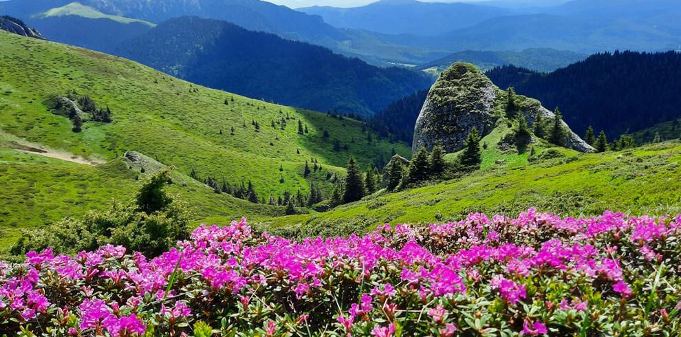 Ciucas Mountains Hiking Tour